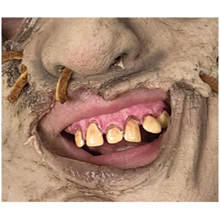 Leatherface Teeth Classic Horror Movie Scary Costume Accessory image